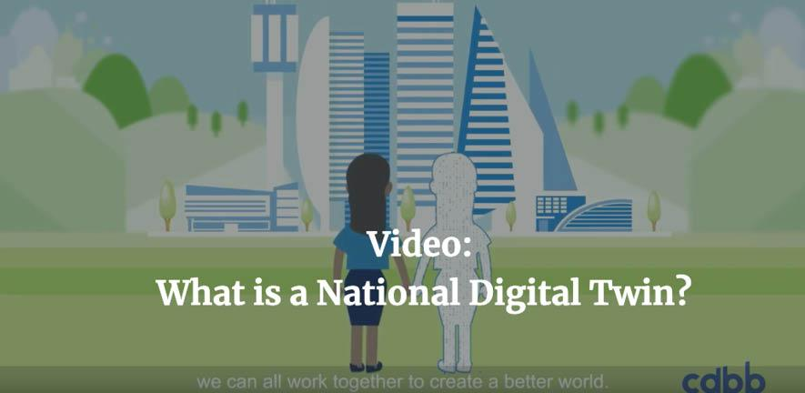 What is a NDT Video Image