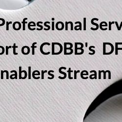 Read more at: Professional Services in support of the Enablers Stream